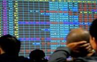 Cổ phiếu ngành caosu: Nơi trú ẩn an toàn?