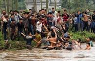 Lễ hội cướp phết Hiền Quan: Lại hỗn loạn!