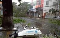 Bão số 11 (cập nhật lúc 8h47'): Tan hoang Đà Nẵng