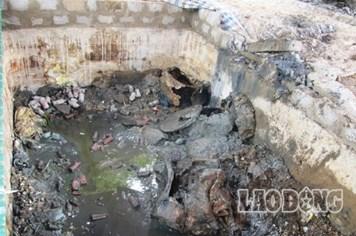 Vụ chôn thuốc trừ sâu: Phát hiện thêm trên 10 tấn thuốc độc