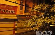 Bão số 14: Nam Định mưa to, gió giật mạnh cấp 8