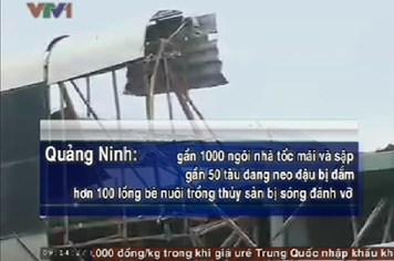 Bản tin video: Tổng hợp thiệt hại do bão số 14 gây ra