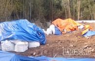 Vụ khai quật hố chôn thuốc trừ sâu: Người dân tiếp tục sống với... thuốc độc (!)