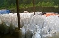 Vụ chôn thuốc trừ sâu: Cty Nicotex muốn chôn lại đất độc xuống đất(?!)