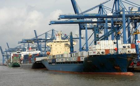 Từ ngày 1.4, cước phí vận tải biển sẽ tăng cao, gây nhiều khó khăn cho DN xuất khẩu thuỷ sản. Ảnh: N.S