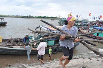 """Cấm tàu thuyền ra khơi, Thái Bình đã sẵn sàng """"đón bão"""""""