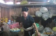Bệnh nhân từ cõi chết trở về nhờ bài thuốc gia truyền của người Thái đen