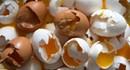 """Bê bối trứng """"bẩn"""" lan rộng ở Châu Âu"""