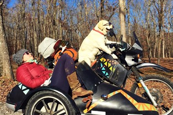 """""""Ghen tị"""" với chú chó đi du lịch bụi qua 15 nước Bắc Mỹ"""