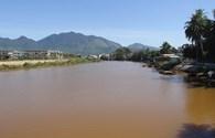 Đà Nẵng: Sông Cu Đê đổi màu, cá chết dạt bờ