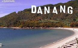Đà Nẵng đề nghị xem xét ngưng đặt bảng quảng bá thương hiệu trên núi Sơn Trà
