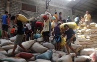 Philippines: 8 người thiệt mạng vì tranh cướp gạo