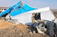 """Tuyên bố gây sốc: Máy bay Nga rơi ở Ai Cập chỉ là mục tiêu bị """"thế mạng"""""""