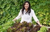 """""""Sốt"""" loạt ảnh cựu Thủ tướng Yingluck trồng rau giữa """"tâm bão"""" xét xử"""