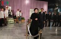 Việt Nam là đoàn đại biểu quốc tế đầu tiên tới Cuba viếng Fidel Castro