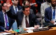Nga phủ quyết dự thảo nghị quyết Liên Hợp Quốc về Syria