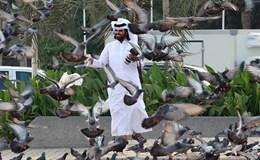 Nga rơi vào tình thế khó khăn vì Qatar?