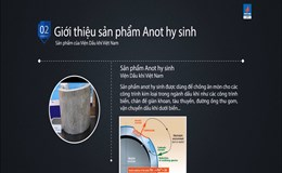 Giải pháp chống ăn mòn kim loại bằng Anot hy sinh của viện Dầu khí Việt Nam
