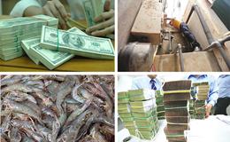 Kinh tế 24h: Quận nói, chủ đầu tư KĐT Ao Sào vẫn phớt lờ; nghi vấn SCB vượt trần lãi suất huy động
