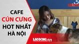 Mê mẩn với quán cafe thú cưng tại Hà Nội