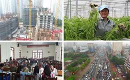 Kinh tế 24h: Ngư dân sự cố Formosa đã được bồi thường bao nhiêu?; Hà Nội biến thành 3.600 phố phường?