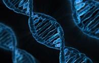 Công nghệ 360: Phát hiện mới về nguyên nhân gây ung thư khiến nhiều người bất ngờ