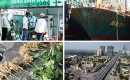 """Kinh tế 24h: """"Khai tử"""" xăng A92, thay thế bằng xăng E5; Vụ tàu vỏ thép hư hỏng tại Bình Định"""