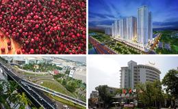 """Kinh tế 24h: Kiến nghị mở thêm cổng """"giải cứu"""" sân bay Tân Sơn Nhất; hàng loạt vi phạm của Mường Thanh tại Nghệ An"""