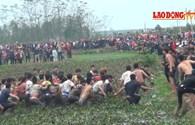 Phá luật, hàng nghìn người lao vào cướp phết ở Hiền Quan