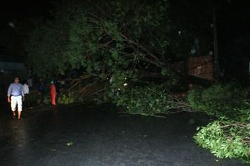 Phó Chủ tịch tỉnh nửa đêm đi đón bão