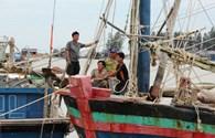 Nghệ An: Đối phó với cơn bão số 14 từ xa
