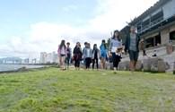 Ngẩn ngơ ngắm rêu xanh bên bờ vịnh Nha Trang