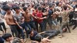Lễ hội cướp phết Hiền Quan như một cuộc hỗn chiến