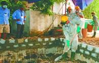 Ngày thứ ba khai quật thuốc trừ sâu: Hố chôn nào cũng có thuốc trừ sâu cực độc