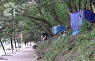 Phát hiện 3 hộ gia đình sống trên cây giữa thủ đô