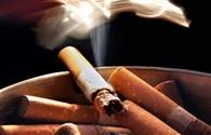 Sử dụng thuốc lá: Gánh nặng bệnh tật và tử vong