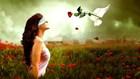 Hãy yêu hết mình, yêu thật lòng, rồi sẽ được đền đáp