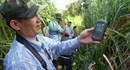 Tạm dừng dự án làm đường  trong Vườn quốc gia Cát Tiên
