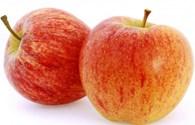 Những lí do khiến bạn nên ăn táo mỗi ngày
