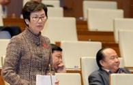 Đại biểu Quốc hội hiến kế tránh chen lấn kinh hoàng tại Giỗ Tổ Hùng Vương