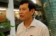 Đại biểu QH Nguyễn Ngọc Phương: Formosa đâu phải tự đến để ký với ông Võ Kim Cự