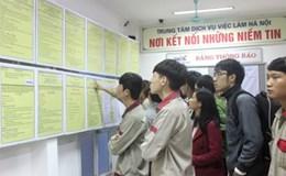 Không nên hạ chuẩn đầu ra đối với ngoại ngữ cho sinh viên đại học