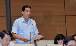 """Đại biểu Quốc hội đau lòng trước hiện tượng """"chạy"""" ở Việt Nam"""