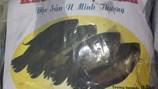 Về U Minh Thượng thưởng thức món cá sặc rằn