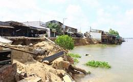 Đồng bằng sông Cửu Long: Tái mặt với nạn sạt lở trái mùa
