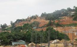 Đà Nẵng: Báo cáo Thủ tướng về dự án du lịch xâm hại núi Sơn Trà