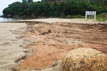 Bùn đỏ từ 40 nền móng biệt thự Sơn Trà tràn biển, Cty CP Biển Tiên Sa phải khắc phục