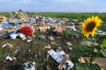 Thêm nhiều thi thể được tìm thấy tại khu vực rơi máy bay MH17