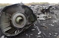 Tìm thấy mảnh vỡ nghi của tên lửa Buk bắn hạ MH17