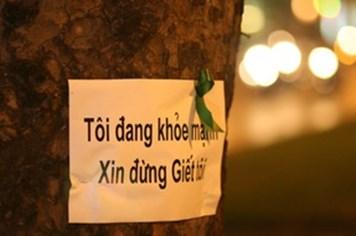 Giới trẻ hưởng ứng chiến dịch cứu 6.700 cây xanh ở Hà Nội